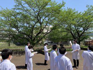 新緑眩しい季節「理科校外学習」植物観察